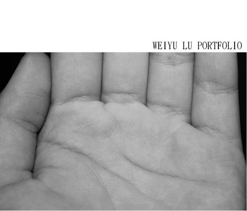 weiyu lu's portfolio